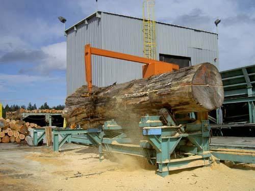 Splitter Saw-Our Spliter saw can handles log 70ft in length and 6ft in diameter.